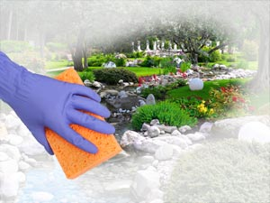 spring cleaning, home repair, home improvement, home maintenance, home renovations, Property Maintenance, pest control